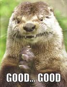 Evil Otter Schemes